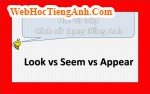 Look vs Seem vs Appear
