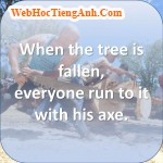 When the tree is fallen, everyone run to it with his axe