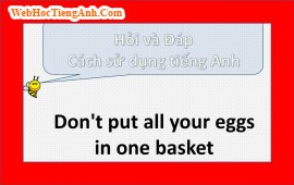 Don't put all your eggs in one basket, 689, Uyên Vũ, Academy.MuaBanNhanh.com, 01/10/2013 16:56:44
