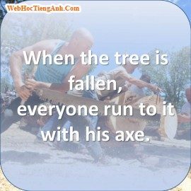 When the tree is fallen, everyone run to it with his axe, 447, Uyên Vũ, Academy.MuaBanNhanh.com, 13/09/2013 09:54:16